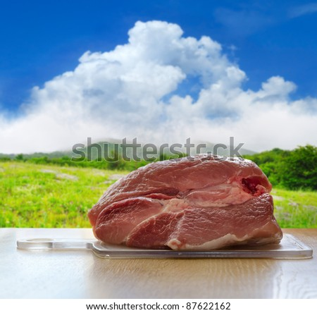 fresh pork (meat) on a cutting plank closeup against the background of natural landscape - stock photo