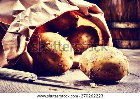 Fresh potatoes in brown paper bag - stock photo