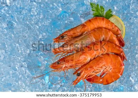 Fresh prawns on ice drift - stock photo