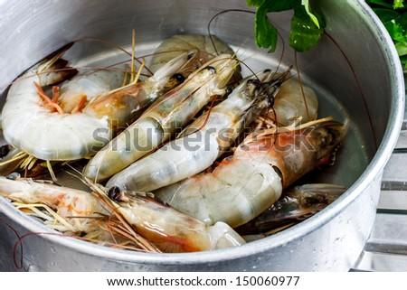 fresh prawns ready for cooking - stock photo