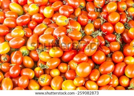 fresh queen tomato  full   frame - stock photo
