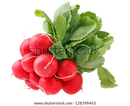 fresh radish isolated - stock photo
