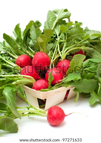 fresh radish on a basket isolated on white background - stock photo