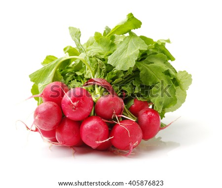 Fresh radish on white background - stock photo