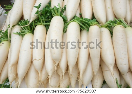 fresh radishes - stock photo