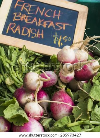 Fresh radishes for sale at farm market. - stock photo