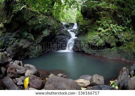 Fresh rain water flows downhill through a lush rainforest on the island of Raiatea in French Polynesia.  This region is filled with idyllic beaches, jungles, and islands. - stock photo