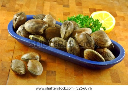 Fresh raw clams ready for steaming in a vintage bowl on a kitchen cutting board with lemon and parsley - stock photo