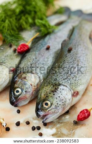 Fresh raw fish rainbow trout - stock photo