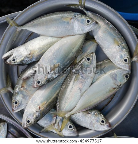Fresh raw fishes for sale in a local market in Thailand - stock photo