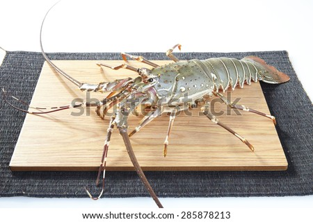 fresh raw lobsters on the wooden plate in white background - stock photo