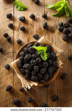 Fresh Raw Organic Blackberries in a Bowl - stock photo