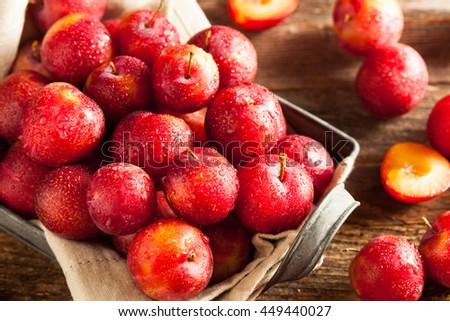 Fresh Raw Organic Cherry Plums Ready to Eat - stock photo