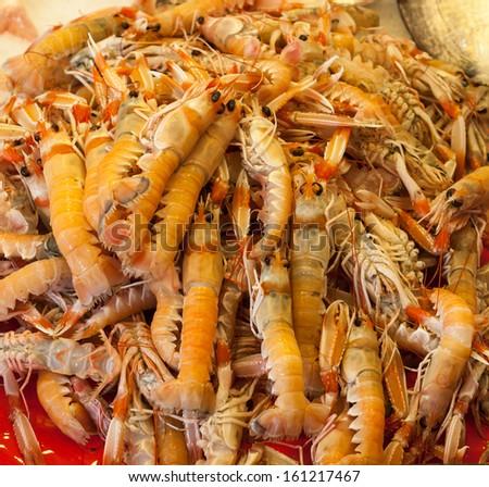 Fresh raw shrimp in market - stock photo