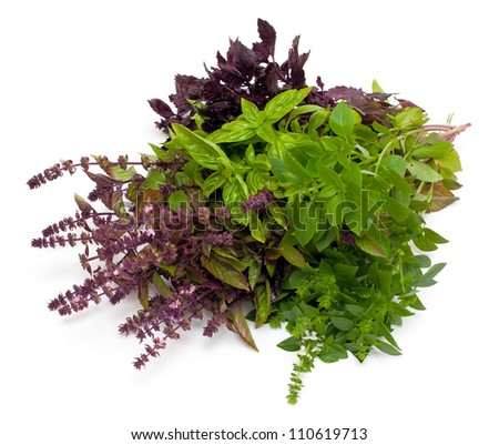 fresh red and green basil isolated on white background - stock photo