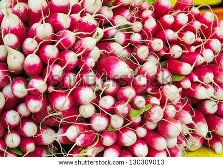 Fresh red and white radishes in a market - stock photo