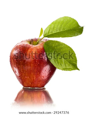 fresh red apple with water drops - stock photo