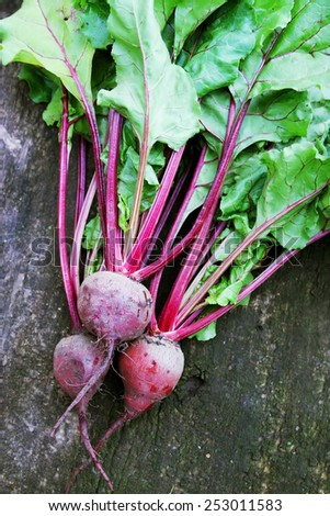 Fresh red beet on the wooden board - stock photo