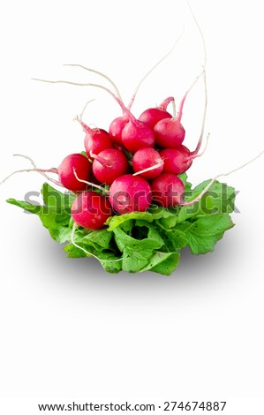 Fresh red radish isolated on white background - stock photo