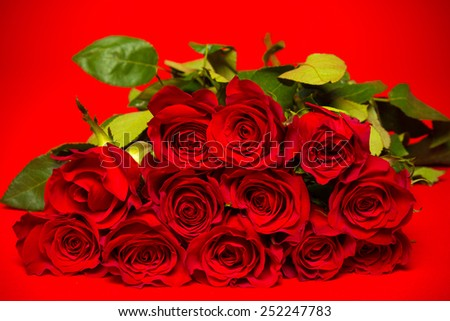 Fresh Red roses on a red background, Valentine's day gift , symbol for love or romance - stock photo