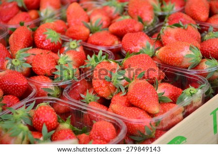 Fresh red strawberries arranged in baskets ready for sale at marketplace. - stock photo