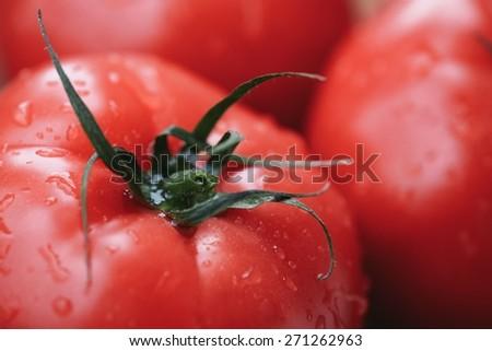 Fresh Red Tomatoes In Macro - stock photo