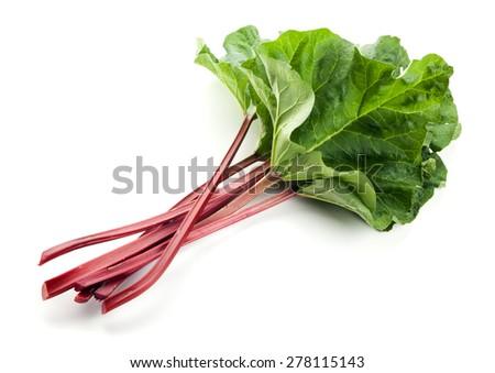 Fresh rhubarb leaf stalks isolated on white background - stock photo