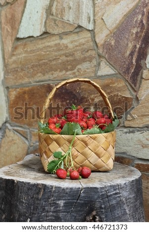 Fresh, ripe and sweet strawberry in wicker basket on stump. Natural stone background. Outdoor and space, garden scene - stock photo