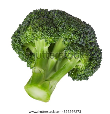 Fresh ripe broccoli piece on white background - stock photo