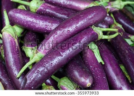 Fresh ripe eggplants. Organic vegetables. Background. - stock photo