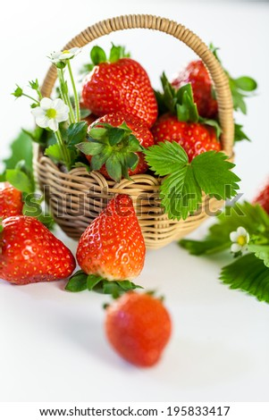 Fresh ripe red strawberries with leaves and blossom displayed on a small rustic wicker basket for a tasty healthy dessert or for use as an aromatic cooking ingredient - stock photo