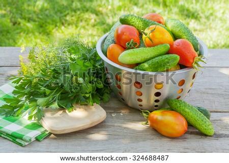 Fresh ripe vegetables on garden table - stock photo