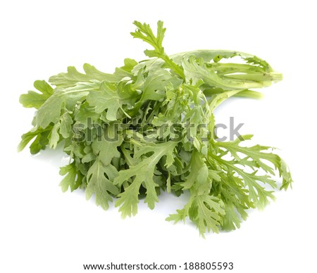 Fresh rucola salad or rocket lettuce leaves isolated on white  - stock photo