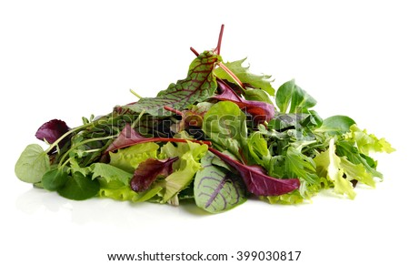 Fresh salad . Different mix of salad leaves - stock photo