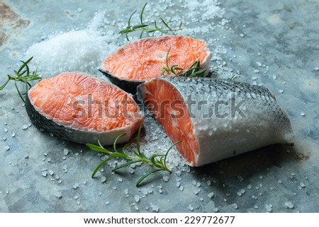 Fresh salmon fish with salt and rosemary - stock photo