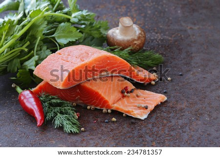 fresh salmon (red fish) fillet with herbs, spices and vegetables - healthy food - stock photo