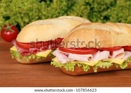 Fresh sandwiches with cheese, tomatoes, ham and salami - stock photo