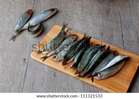 Fresh sardines on wooden board - stock photo