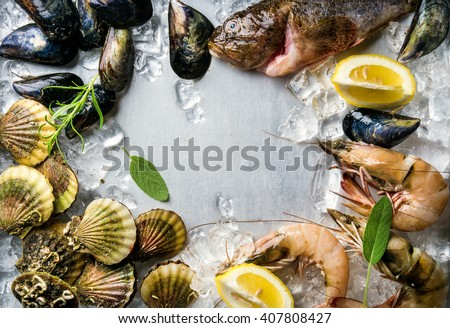 Fresh seafood with herbs and lemon on ice. Prawns, fish, mussels and scallops over steel metal background. Food frame. - stock photo