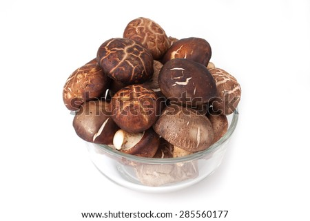 fresh shitake mushroom pile on white background - stock photo