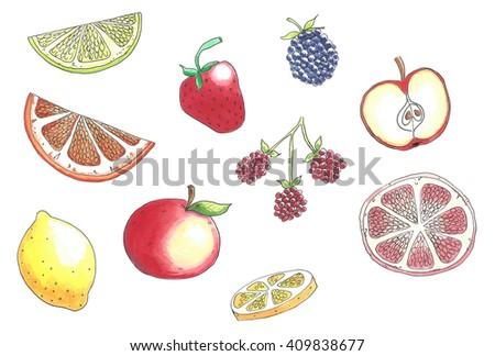 fresh slices of fruit hand drawning isolated over white background - stock photo
