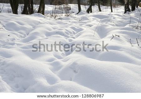 Fresh snow cover, - stock photo