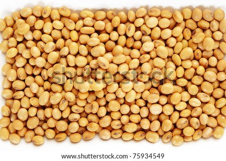 fresh soybean seed on white background - stock photo