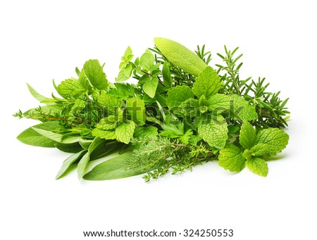 Fresh spices herbs isolated on white background - stock photo