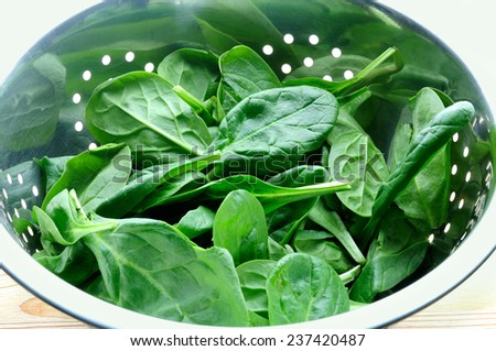 fresh spinach - stock photo