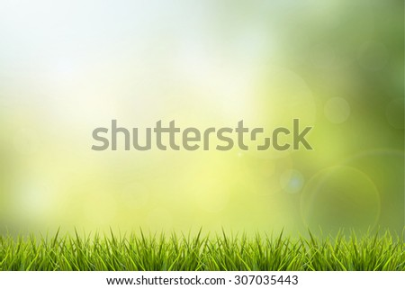 Fresh spring grass and green nature blurred background - stock photo