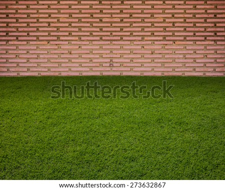 Fresh spring green grass and leaf plant over  wall    background - stock photo