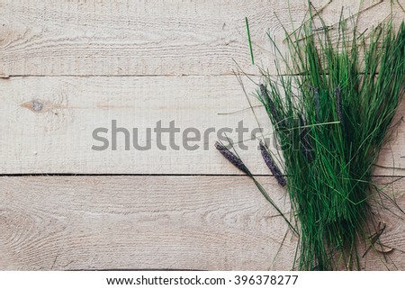 Fresh spring green grass lie over wood fence background - stock photo