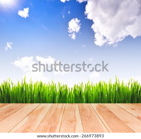 Fresh spring green grass with blue sky and sunlight and wood floor. Beauty natural background - stock photo