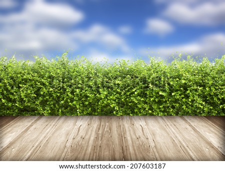 Fresh spring green grass with blue sky and wood floor background - stock photo